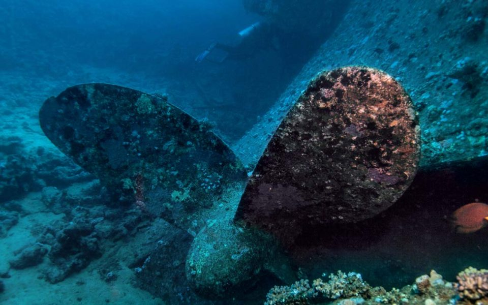 Safari wrakowe morze Czerwone